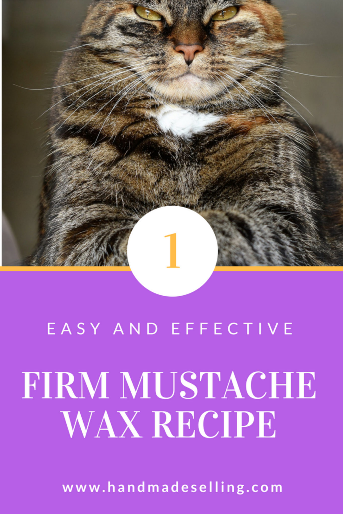 How to Make a Fantastic Firm Mustache Wax Recipe