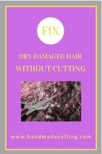 fix dry damaged hair without cutting