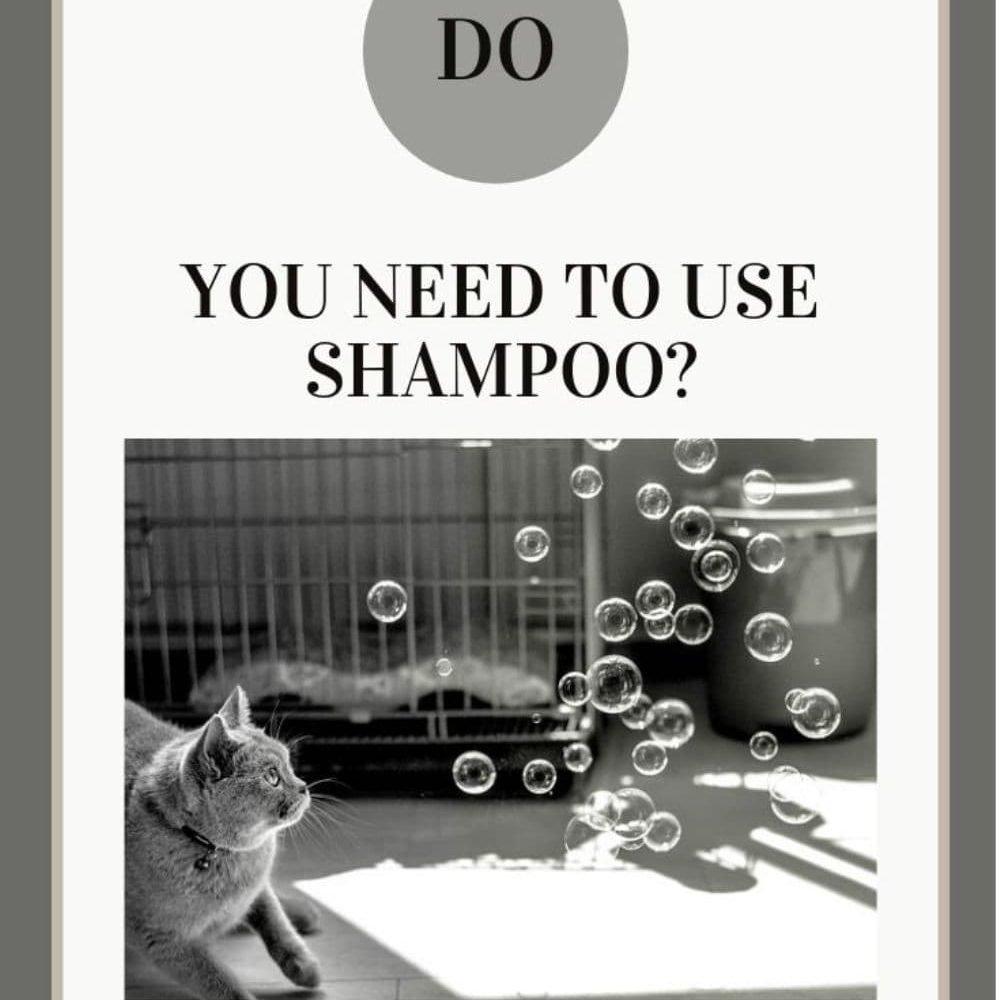 do you need to use shampoo